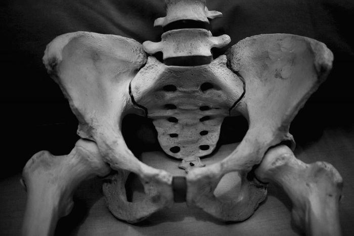 El fotógrafo y su esqueleto